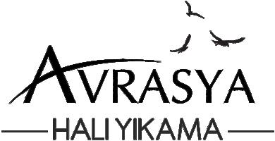 logo-home-avrasya-hali-yikama